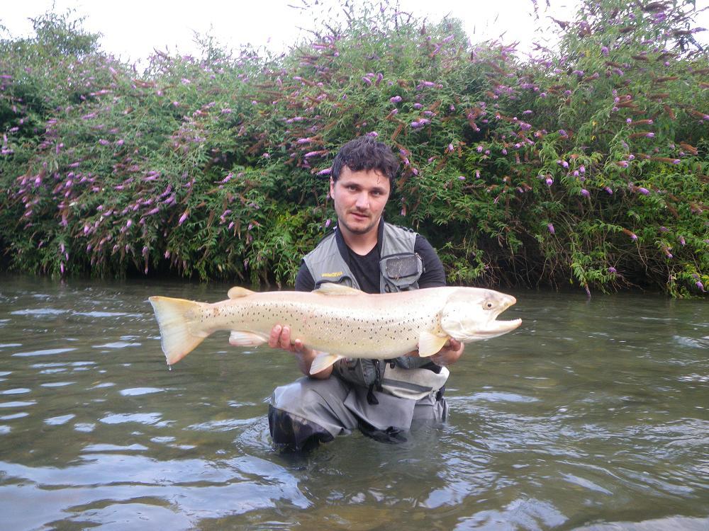 La pêche pour les débutants sur le brochet de vidéo les leçons