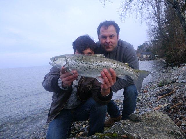 Truite lacustre de janvier 2013 zanella p che - Comment cuisiner une grosse truite ...